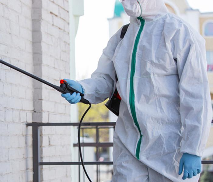 empresa desinfecciones cádiz
