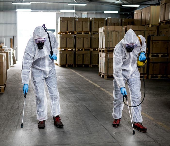 empresa desinfecciones córdoba