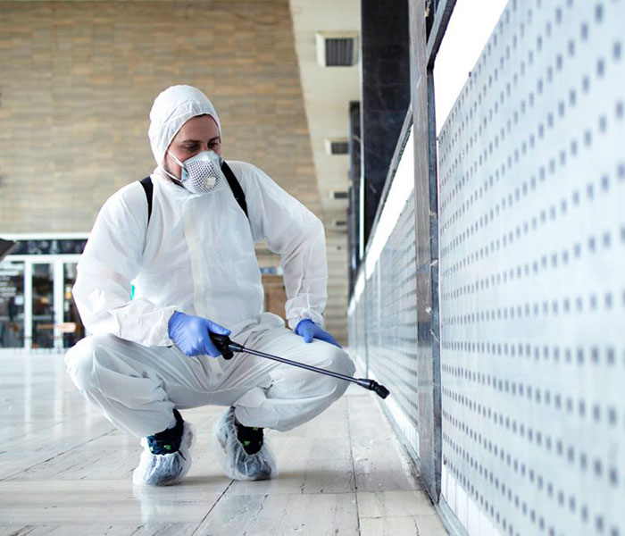 empresa desinfecciones huelva