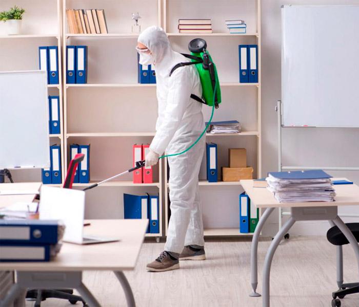 empresa desinfecciones málaga