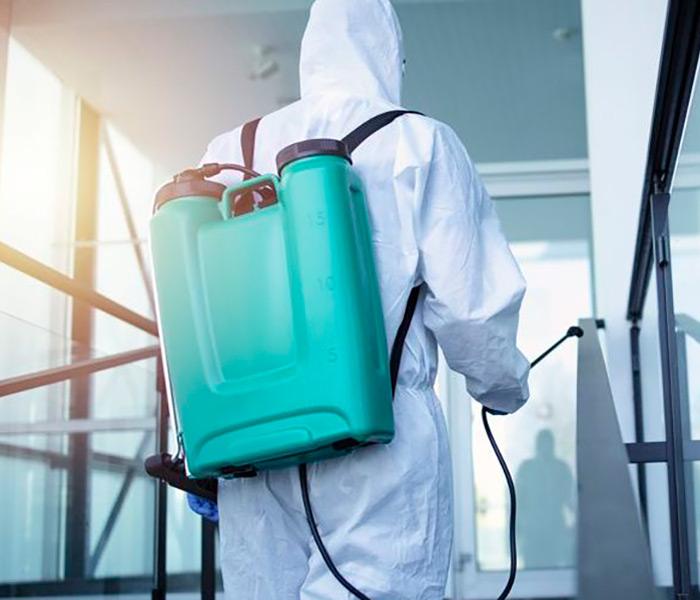 empresa desinfecciones sevilla